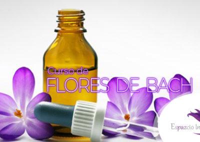 Terapeuta Floral